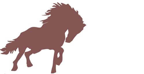 左馬【ひだりうま】|縁起が良い?意味や由来は?