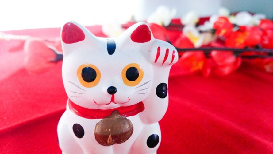 《招き猫》由来や種類、金運アップは?右手左手、色や手の長さのご利益の違い【招き猫 通販】