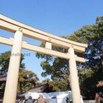 《初詣/100周年》明治神宮・都内最強パワースポットめぐり!【井戸・亀石】