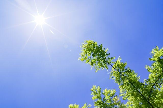 太陽の光で浄化