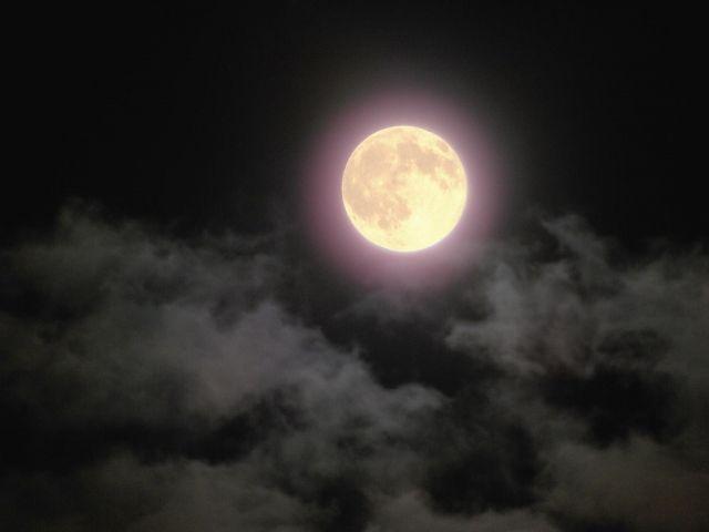 月の光で浄化